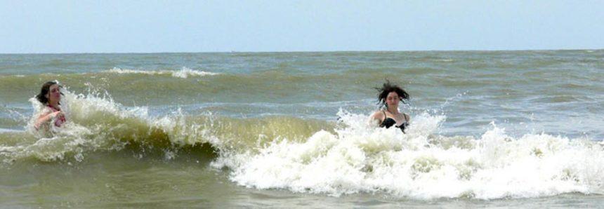 Activities you must do in Sundarbans