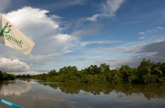 Christmas in Sundarbans